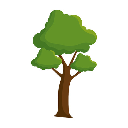 tree plant nature icon vector illustration design Vettoriali