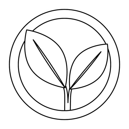 leafs plant ecology emblem vector illustration design Illustration
