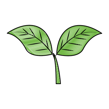 leafs plant ecology emblem vector illustration design  イラスト・ベクター素材