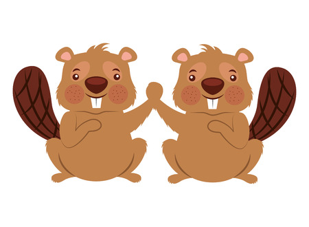 cute couple beaver animal rodent vector illustration