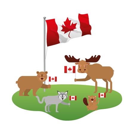 cute wolf bear moose and beaver with canadian flag vector illustration