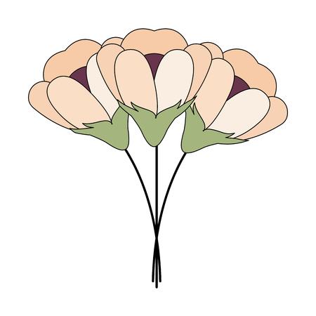 flowers bouquet decorative icon vector illustration design Illustration