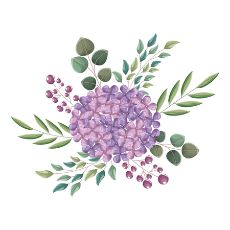 beautiful arrangement flower berries leaves floral vector illustration