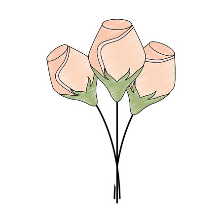 bunch natural decoration flowers ornament vector illustration