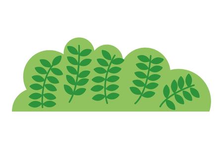 bush nature with leafs icon vector illustration design