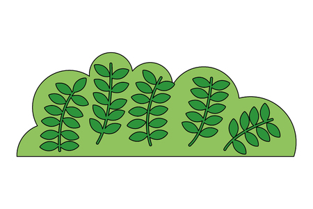 natural green bush leaves branches vector illustration
