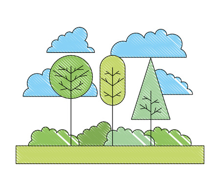 natural landscape forest trees bushes and sky vector illustration drawing