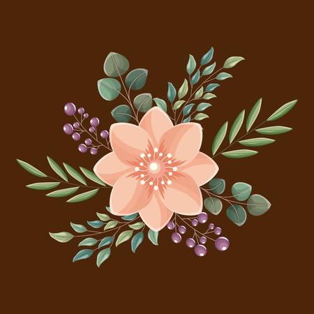 decorative flower leaves seeds natural vector illustration Illustration