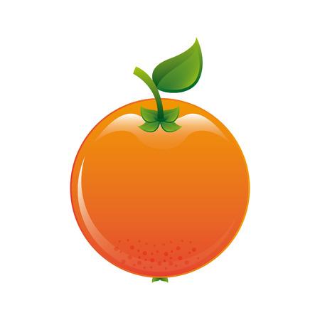 fruit design  over white background vector illustration Çizim