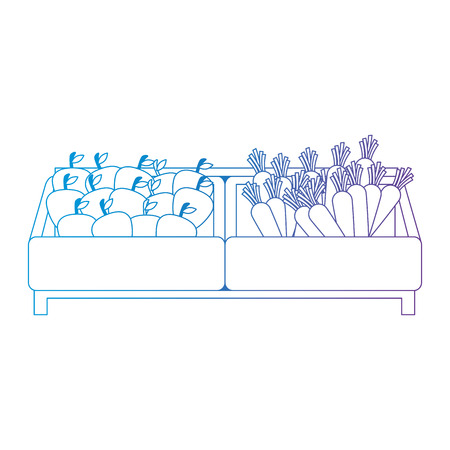 supermarket wooden shelf with carrots and apples vector illustration design