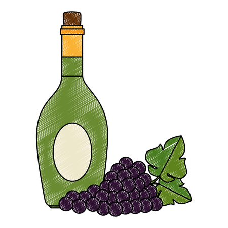 wine bottle and grapes cluster vector illustration design Ilustrace