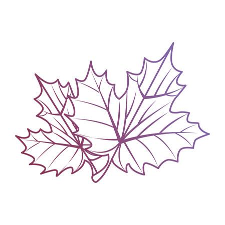 grape leafs isolated icon vector illustration design Ilustrace