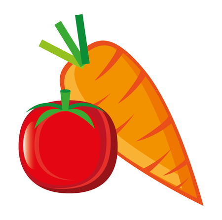 fresh tomato and carrot vector illustration design