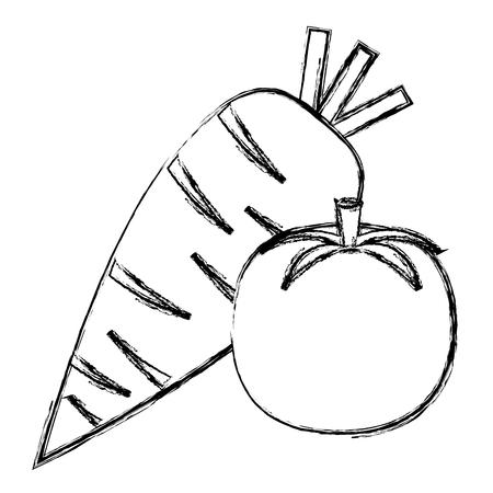 fresh tomato and carrot vector illustration design