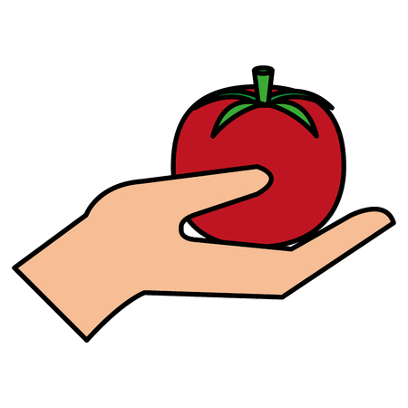 hand with fresh tomato vector illustration design