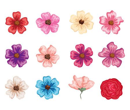 set beautiful flowers icons vector illustration design
