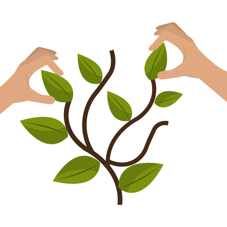 hands with plant ecology vector illustration design Foto de archivo - 112380648