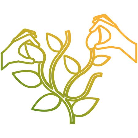 hands with plant ecology vector illustration design Foto de archivo - 105557288