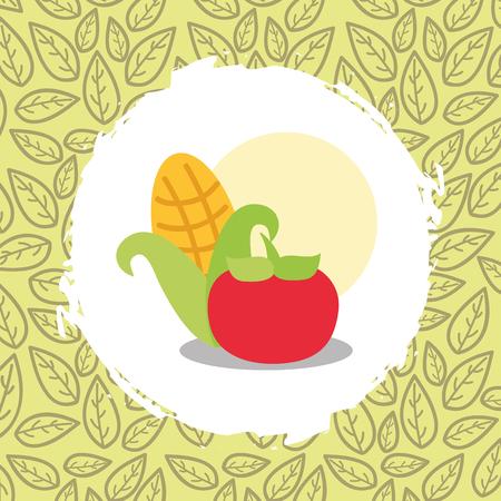 corn and tomato vegetables organic natural vector illustration Stok Fotoğraf - 112384540