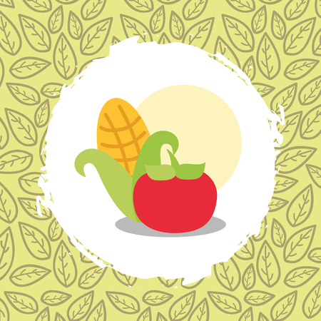 corn and tomato vegetables organic natural vector illustration