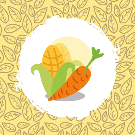 carrot and corn vegetables organic natural vector illustration