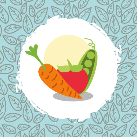 carrot peas and tomato vegetables organic natural vector illustration