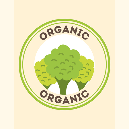 broccoli food fresh organic label vector illustration Foto de archivo - 105945728