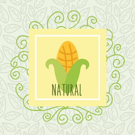 corn leaves background harvest food natural vector illustration