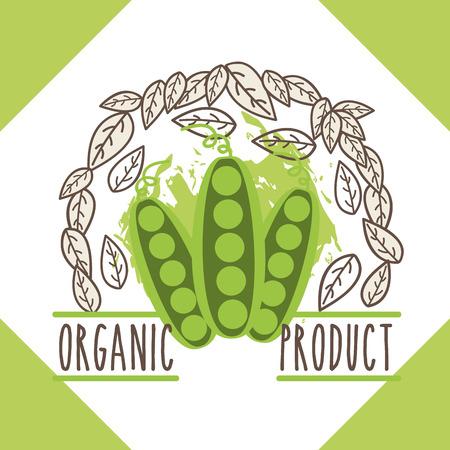 peas vegetable menu organic product brochure vector illustration Illustration