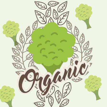 broccoli vegetable diet organic vintage card vector illustration