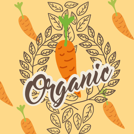 carrot vegetable diet organic vintage card vector illustration