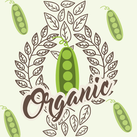 peas vegetable diet organic vintage card vector illustration  イラスト・ベクター素材