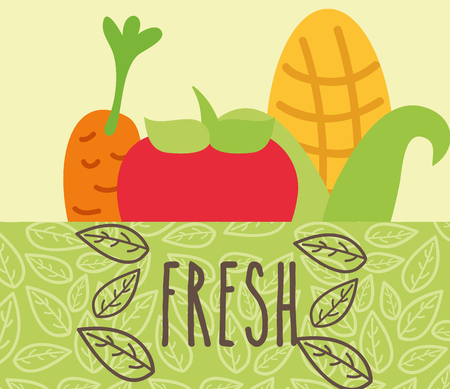 tomato corn and carrot vegetables food fresh vector illustration Ilustração