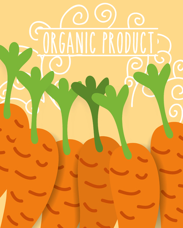 organic product fresh vegetables carrots vector illustration