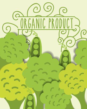 organic product fresh vegetables broccoli vector illustration Illustration