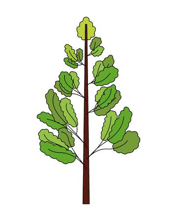 natural tree leaves branches botanical vector illustration  イラスト・ベクター素材