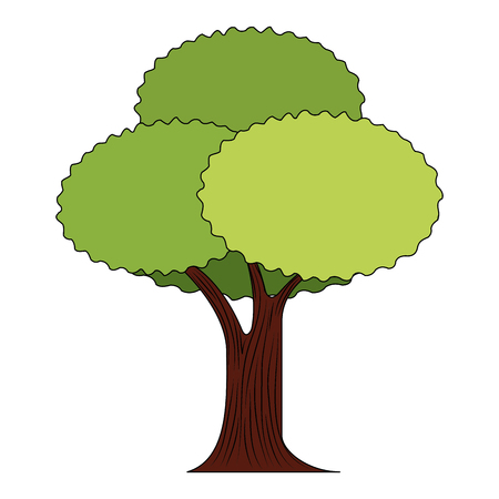 leafy tree foliage nature trunk forest vector illustration