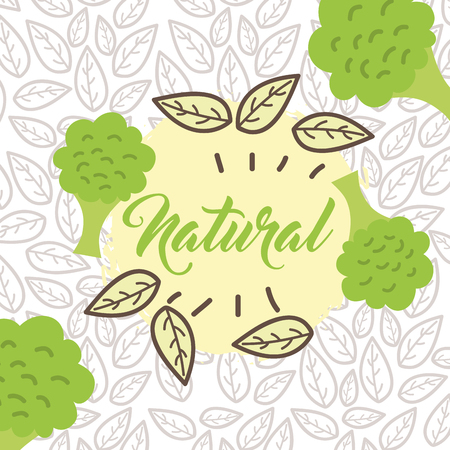 broccoli vegetable food fresh natural leaves vector illustration