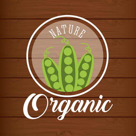 peas on pods nature organic on wooden table vector illustration Ilustrace