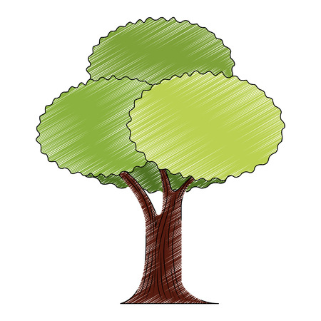 tree plant isolated icon vector illustration design 向量圖像