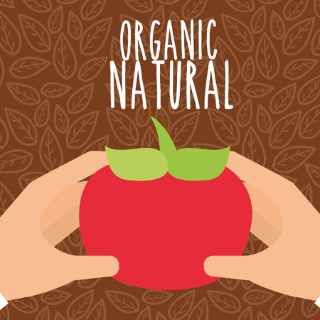 hands with tomato vegetable organic natural vector illustration