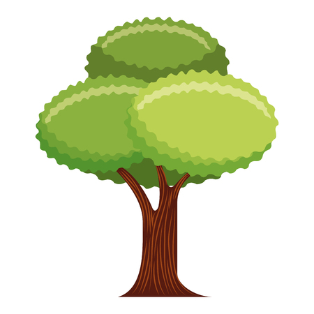 tree plant isolated icon vector illustration design Reklamní fotografie - 112390110