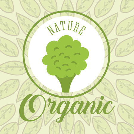 leaves background broccoli nature organic vector illustration
