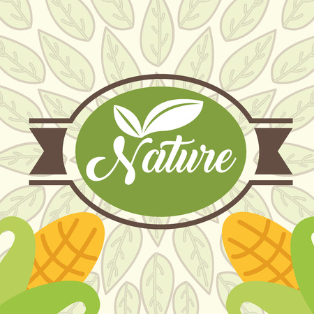 corn on cobs food organic nature banner vector illustration Çizim