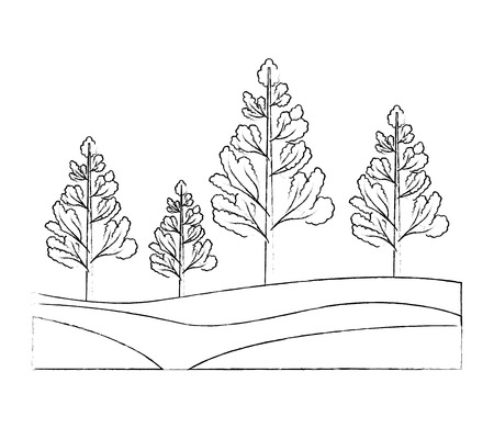 nature trees forest foliage botanical vector illustration hand drawing