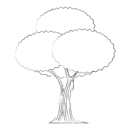 leafy tree foliage nature trunk forest vector illustration hand drawing