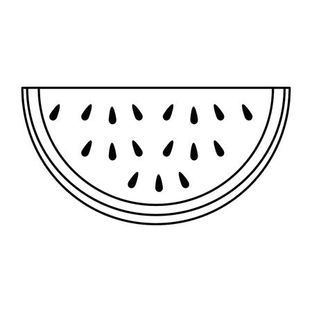 watermelon sliced fruit icon vector illustration design