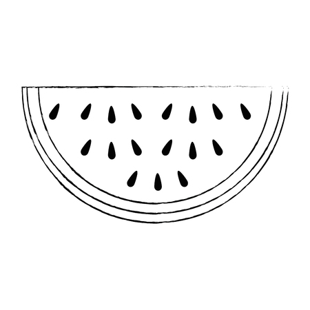 watermelon sliced fruit icon vector illustration design