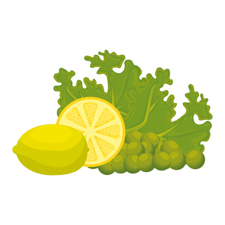 fresh lettuce with lemon and grapes healthy food vector illustration design