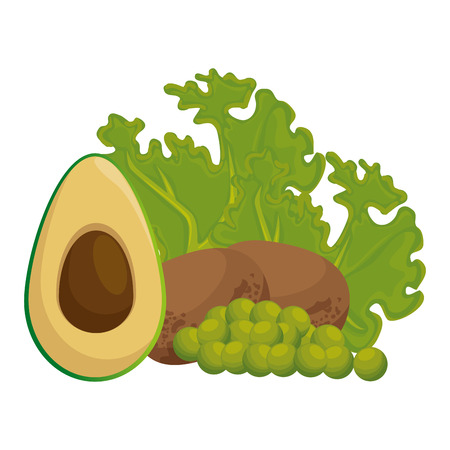 fresh lettuce with avocado and potatoes healthy food vector illustration Standard-Bild - 112282856